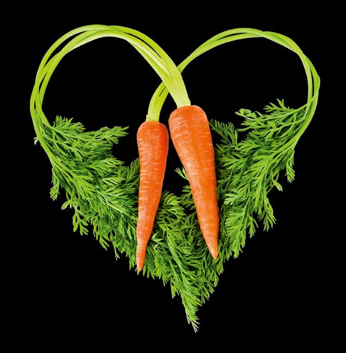 EDEKA Paul Herz Gemüse