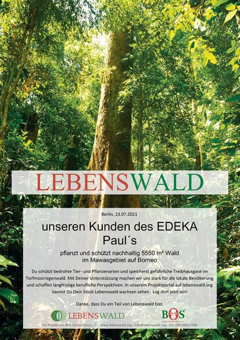 Urkunde Lebenswald